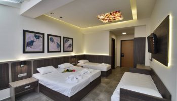 Hotel Dafni Plus Room